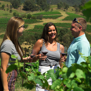 Group of people drinking wine in the Hunter Valley