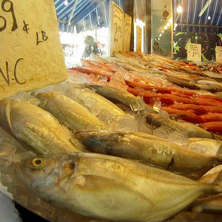 Fish market stall in Toronto